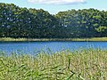 2015-09-28 Rochowsee 020.jpg