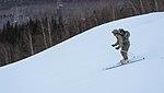 2016 US Army Alaska Winter Game 160126-A-MI003-239.jpg