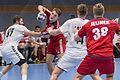 20170112 Handball AUT CZE 5941.jpg