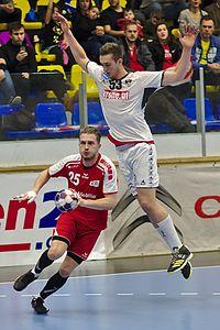 20170114 Handball AUT SUI DSC 9850.jpg