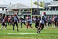 2019 Cleveland Browns Training Camp (48532238402).jpg