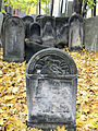 251012 Detail of tombstones at Jewish Cemetery in Warsaw - 59.jpg