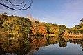 308, Taiwan, 新竹縣寶山鄉油田村 - panoramio (19).jpg