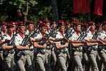 35th Parachute Artillery Regiment Bastille Day 2013 Paris t110829.jpg