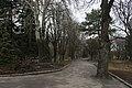 59-101-0216 Sumy Sadyba Asmolowa Dendropark SAM 8354.jpg