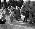 700000ste bezoeker in Diergaarde Blijdorp , het echtpaar Starkenburg krijgt cad, Bestanddeelnr 910-6958.jpg