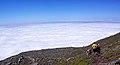 Açores 2010-07-22 (5148682213).jpg