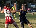 AFL Bond University Bullsharks (18143054212).jpg