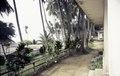 ASC Leiden - van Achterberg Collection - 1 - 005 - Le jardin de l'hôtel De l'Océan - Kribi, Cameroun - 6-12 février 1997.tiff