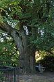 AT-122319 Gesamtanlage Augustinerchorherrenkloster 083.jpg