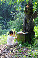 A Hindu offering prayers Sambangan Bali Indonesia.jpg
