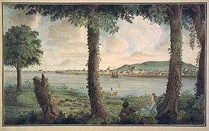 Canadian art - A View of Montreal in Canada, Taken from Isle St. Helena in 1762  by Thomas Davies