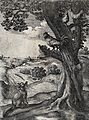 A fox is sitting underneath a tree on which a cockerel and t Wellcome V0023016.jpg