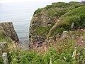 A geo at the southern end of Porth Tyddyn-uchaf - geograph.org.uk - 1379731.jpg