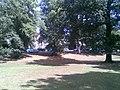 Abington Park - geograph.org.uk - 2003192.jpg