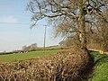Above Well Farm - geograph.org.uk - 2318675.jpg