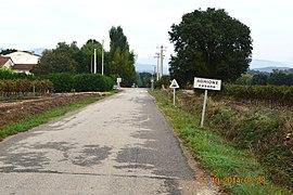 Aghione Entry.JPG