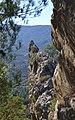 Agulla a la muntanya del castell de Benifallim.jpg