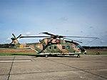 Agusta-Westland EH-101 Merlin, 19611, Belgian Air Force Days 2018 pic4.jpg