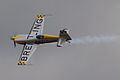 AirExpo 2014 - Extra Breitling 02.jpg
