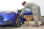 Air Force Military Working Dog 160914-F-BO631-1112.jpg