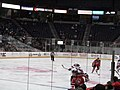 Albany Devils vs. Portland Pirates - December 28, 2013 (11622260564).jpg