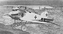 Albatros D.I.jpg