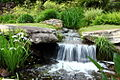 Aldridge Gardens Waterfall.jpg