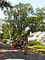 Alexandria Storm, August 2010 (4872862736).jpg