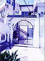Alger, la blanche 3.jpg