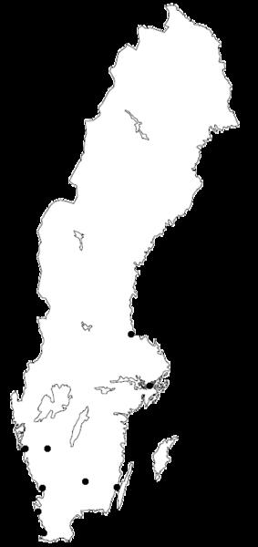 File Allsvenskan Teams Png Wikimedia Commons