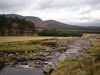 Loch Muick - Allt Darrarie, flowing down to the River Muick just below Loch Muick