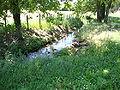 Aluze (Saône-et-Loire, Fr) la Thalie près de sa source à Eutonnoir, 2.JPG