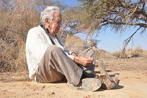 Amotz Zahavi - Zahavi with wild Arabian babblers, whose social behavior he studied