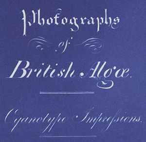 Anna Atkins - Detail of title page of Photographs of British Algae: Cyanotype Impressions