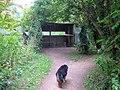 Approaching the Ken Jackson Hide, Tringford Reservoir - geograph.org.uk - 1419277.jpg