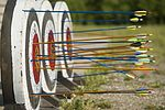 Archery for youth 150615-F-XA488-068.jpg