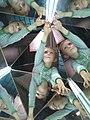 Arthur kaleidoscope.jpg