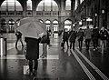 As far as rain gues (13719237565).jpg
