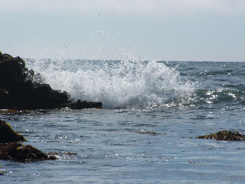 File:Asilomar State Beach (Breaking wave) 01.jpg
