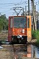 Astrakhan trams, 1041 stowaway.jpg