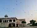 At Shahi Qila Lahore.jpg