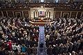 At the US Congress (27629001966).jpg