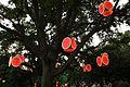 Auckland Lantern Festival (4468085337).jpg