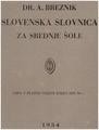 BREZNIK 1934 Slovnica srednje šole Brez naglasov.pdf