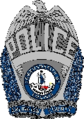 Badge of the Arlington County Police Department.png