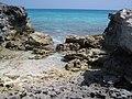 Bahamas 2009 (3426313426).jpg