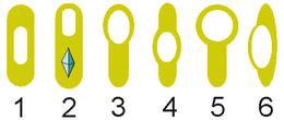 Variations in endospore morphology. (1, 4) Central endospore, (2, 3, 5) terminal endospore, (6) lateral endospore