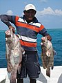 Banco Chinchorro, catch of the day (14179292478).jpg