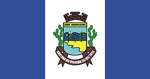 Santana do Ipanema - Image: Bandeira sdoipanema